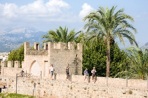 Activities Alcudia - Delightful strolls